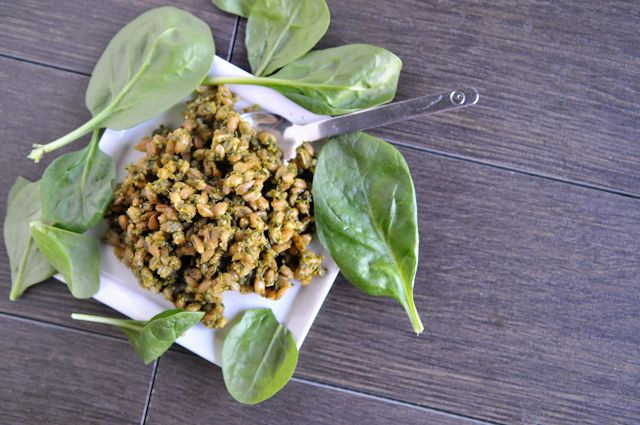 Arugula Pesto Farro Salad {Heather's dish}