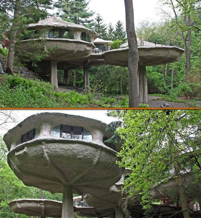 mushroom house in pittsford new york tree houses
