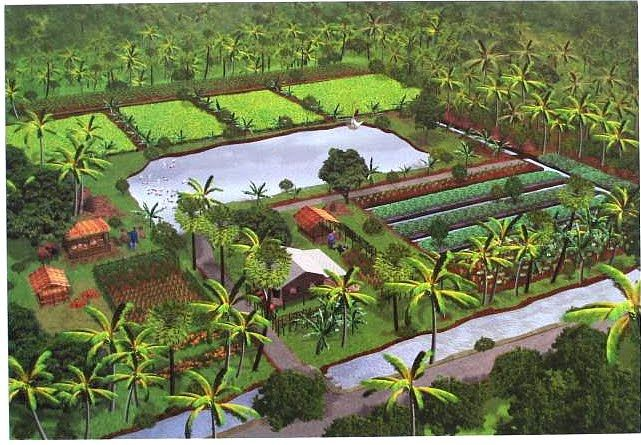 SELF-SUFFICIENT ECONOMY  http://www.chaipat.or.th/chaipat_old/journal/aug99/eng/self.html    A vision of self-sufficiency in Thailand. Agrarian values and the  self-reliance they engender are the hallmarks of real freedom.
