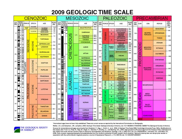geologic time scale coloring pages - photo#12