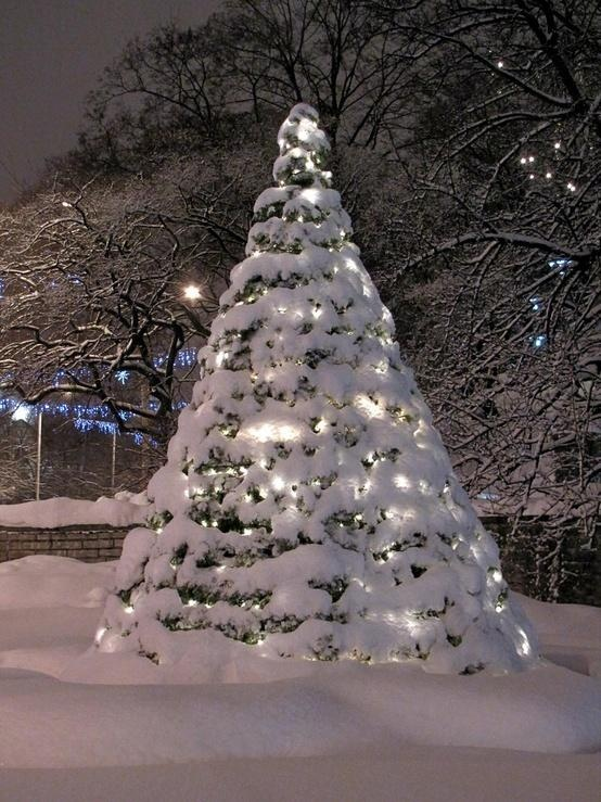 christmas tree snow scenes pinterest. Black Bedroom Furniture Sets. Home Design Ideas
