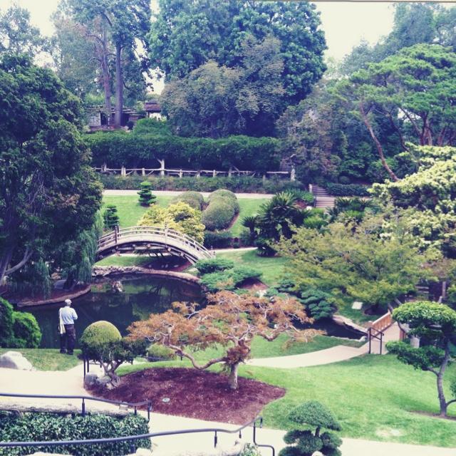 Huntington Gardens Pasadena Ca California My Travels