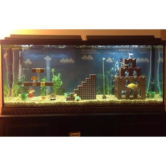 Interesting fish tank Just Ideas Pinterest