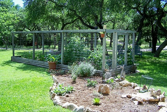 Pin by michael carolyn kurtz on my garden pinterest - Deer proof vegetable garden ideas ...