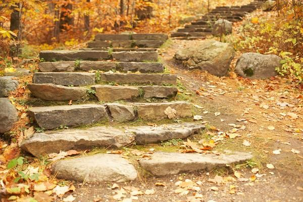 How To Landscape Stone Steps On A Hillside