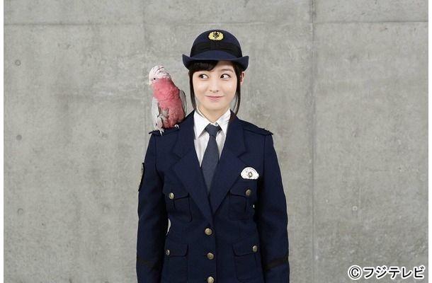 警視庁いきもの係の画像 p1_18
