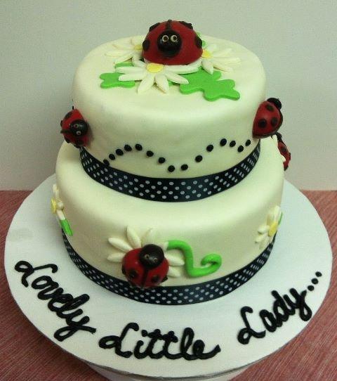 ladybug baby shower cake ladybugs pinterest
