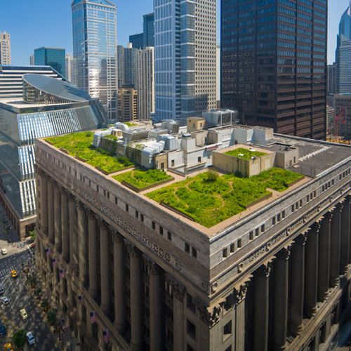 Green roof Chicago City hall