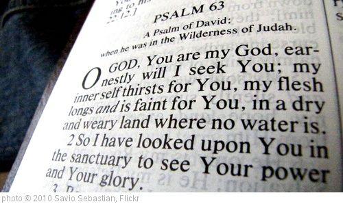 50 Best Bible verses to memorize