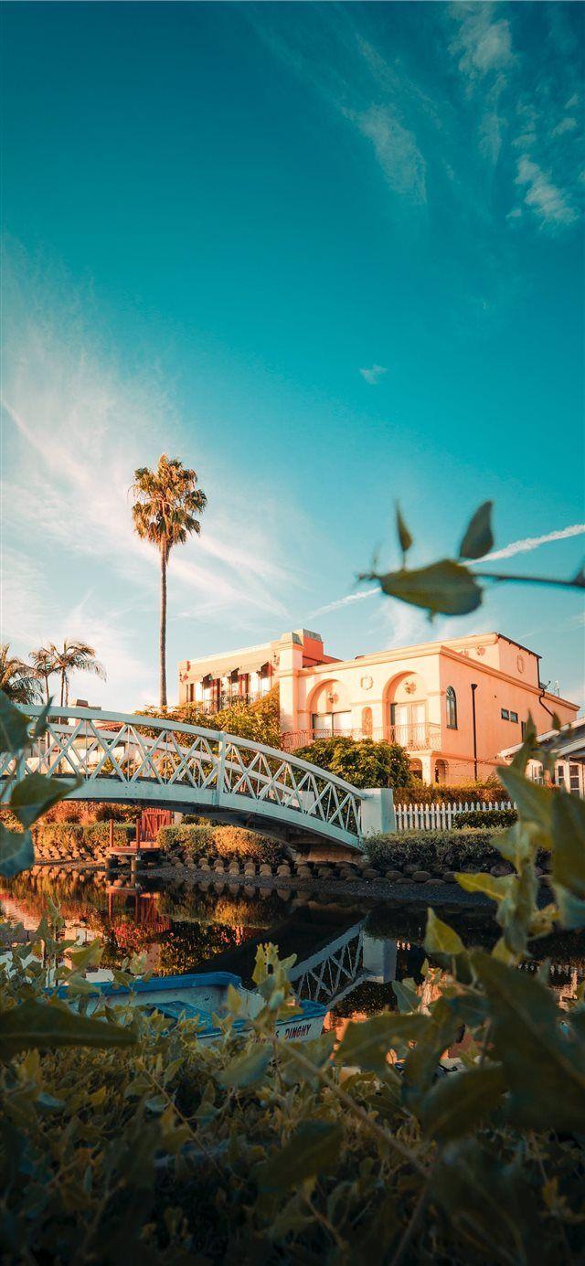 Venice Beach Iphone X Wallpaper Floweryred2 Com