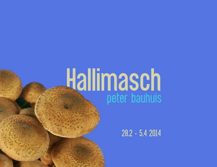 Peter Bauhuis - Hallimasch