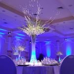 Final decision for reception tables.  White hydrangea will be in bottom of cylinder vase with blue LED uplights, then white flowers on top with white sparkly twigs (that will match ceremony decoration) with blue fairy lites incorporated into the flowers.  Beautiful!