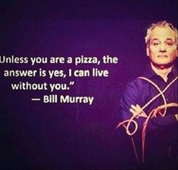bill murray funny quotes quotesgram