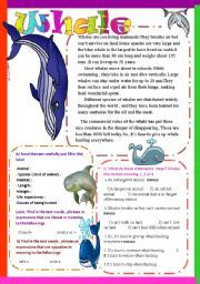 ... Classifying Animals Worksheets likewise Bird Watching Worksheet also