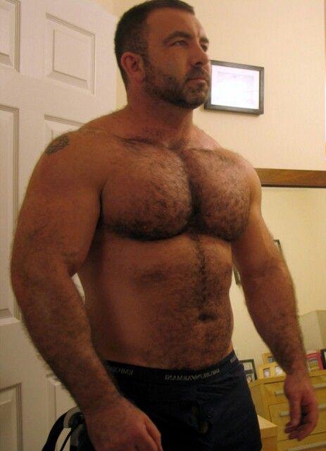 Hairy bears muscle