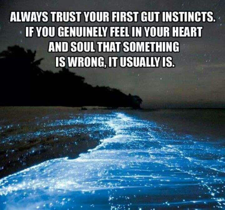 trust your gut instinct dating Is your gut leading – or misleading you search for content, post in your dating decisions even if your gut and your brain are assuring you it's a.