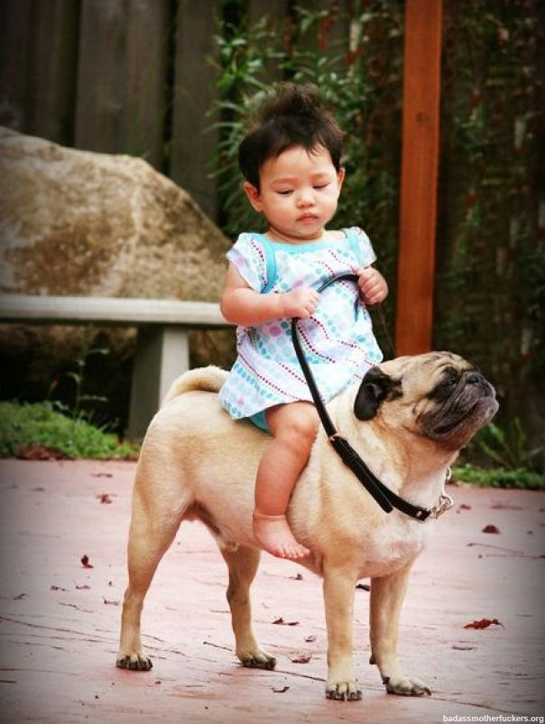 asian baby riding a dog. two of the cutest things in the world combined. i think i might explode.