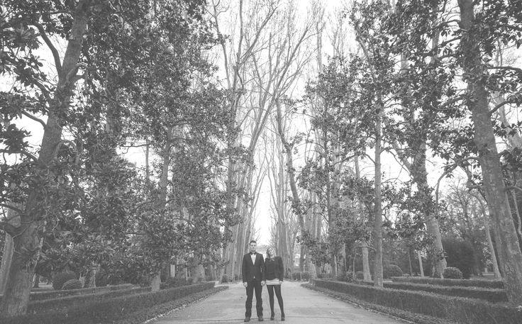 Fotografía pre boda en Aranjuez. Esta se realizó en sus magnificos jardines