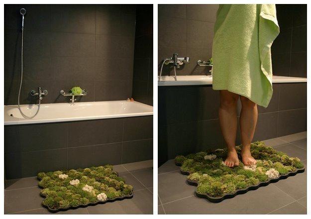 how to get moss off outdoor carpet