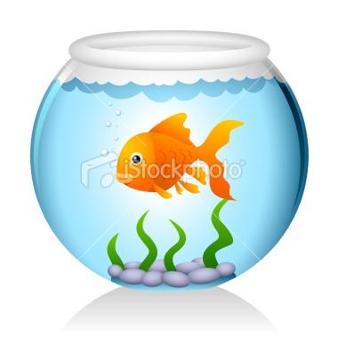fish bowl illustrations - Bing Images | FISH BOWLS | Pinterest