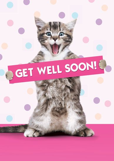 get well sister graphics | get well soon cats