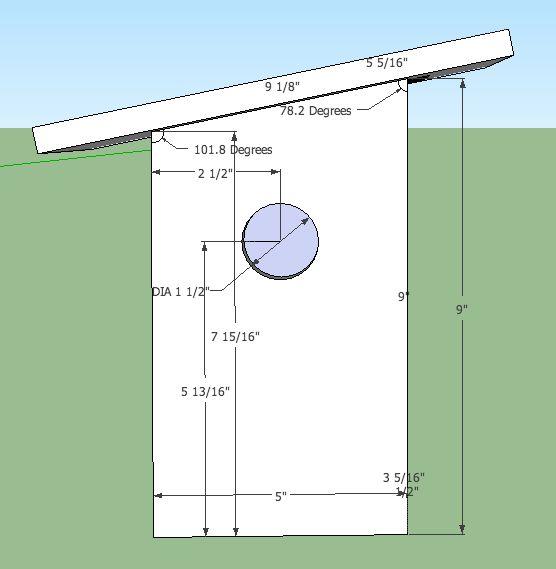 sparrow bird house plans bird house ideas pinterest