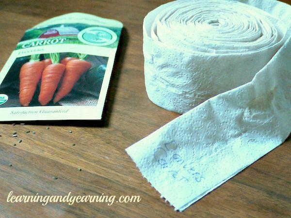 Make Your Own Seed Tape: acqua e un po di farina x fermare i semi ...