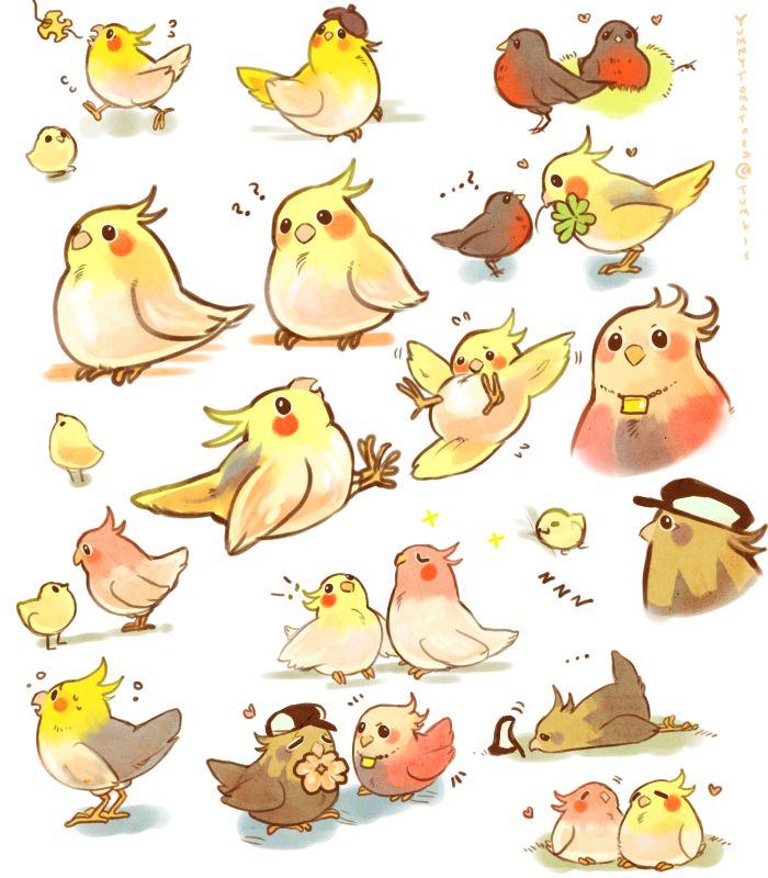 Cute Cockatiels | Art - Animal | Pinterest