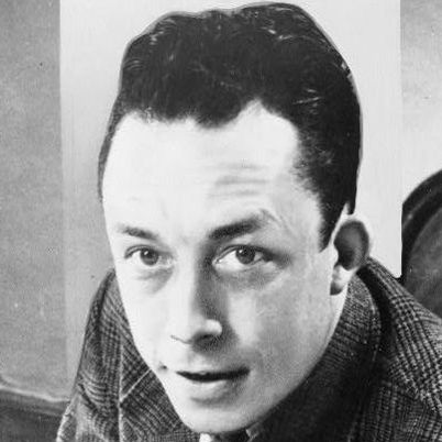 the portrayal of albert camus as meursault in the stranger