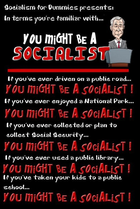 You might be a socialist...