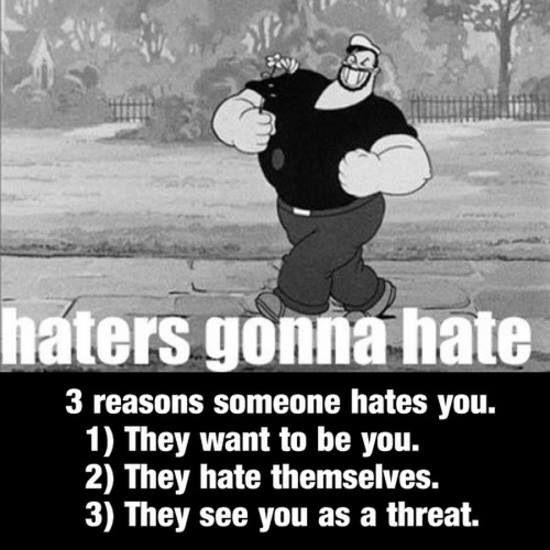 Image result for Haters Will Hate