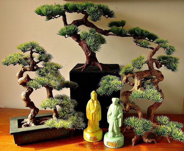 Royal Haeger Bonsai Garden by haegernerd, via Flickr