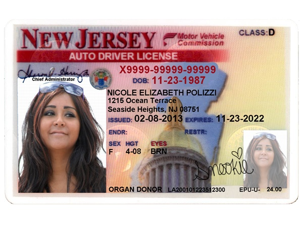drivers license template psd free download 2018