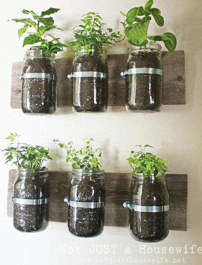 Kitchen Herb Planter Brilliant With Mason Jar Herb Garden Wall Image