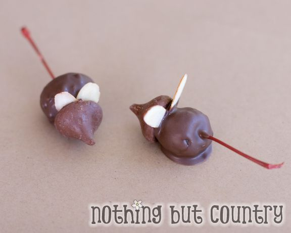 Chocolate Christmas Mice   Cookies, Cupcakes, and More   Pinterest