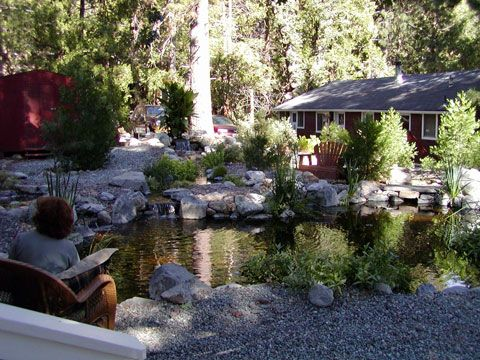 Idyllwild Cabins on Silver Pines Lodge And Creekside Cabins  Idyllwild  Ca   Local