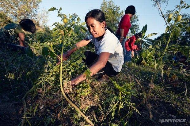 farmer city single lesbian women Browse profiles & photos of single women in dewey, dewitt, elliott, farmer city , fisher lesbian singles.