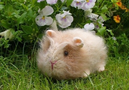 Knitting Pattern For A Guinea Pig : guinea pig knitting Adorable..... Pinterest