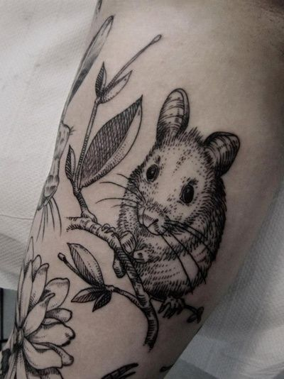 Field Mouse (on arm)