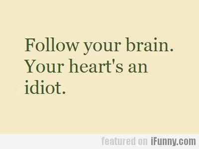 follow your heart or brain essay