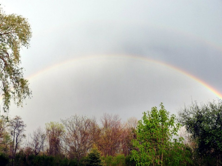 """Today I am grateful for the rain, and the rainbows that come after.""    Dawn from, CT  July 6, 2012  #365Grateful"