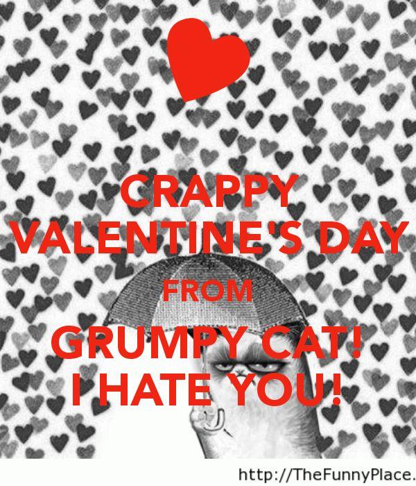 i hate valentine s day online subtitrat