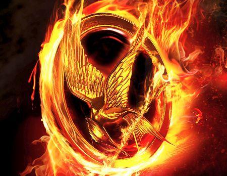 Hunger Games- Mocking Jay Pin