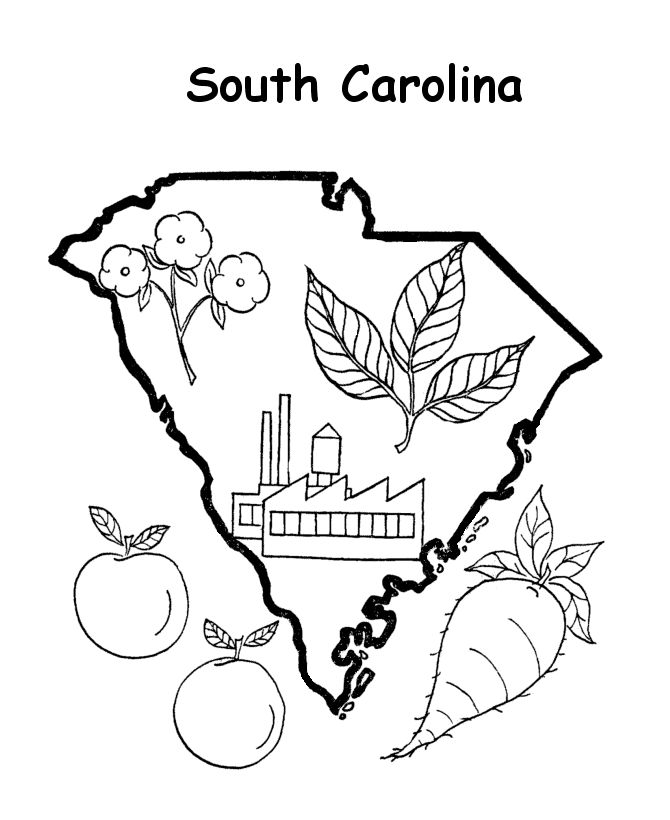 South Carolina Football Coloring Pages Coloring Pages