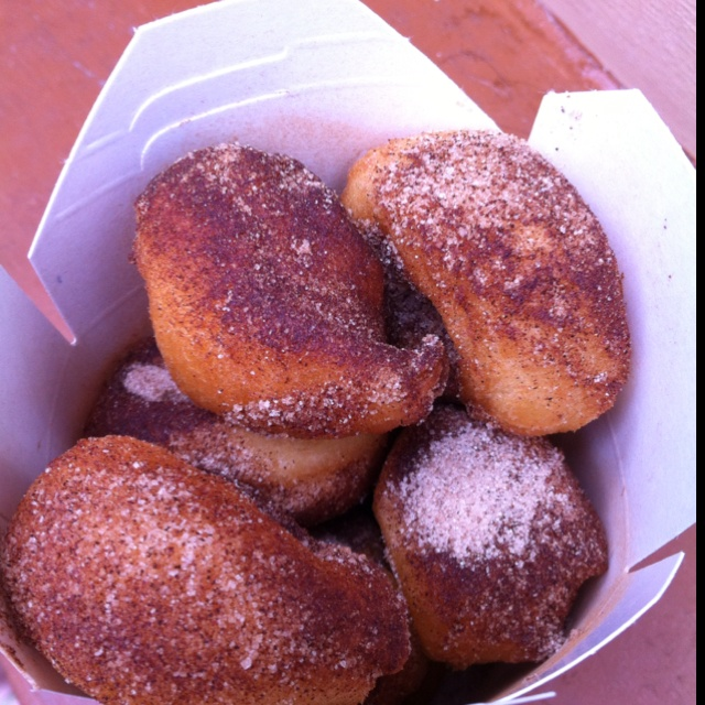 Deep fried donuts in Florida | DEEP FRIED SWEET | Pinterest