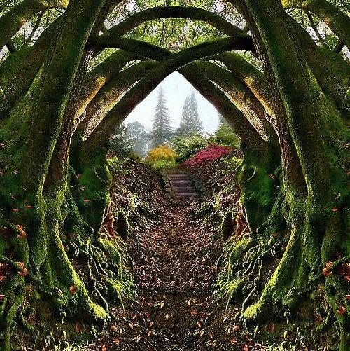 Japanese Garden Portland Oregon I Need A Vacation