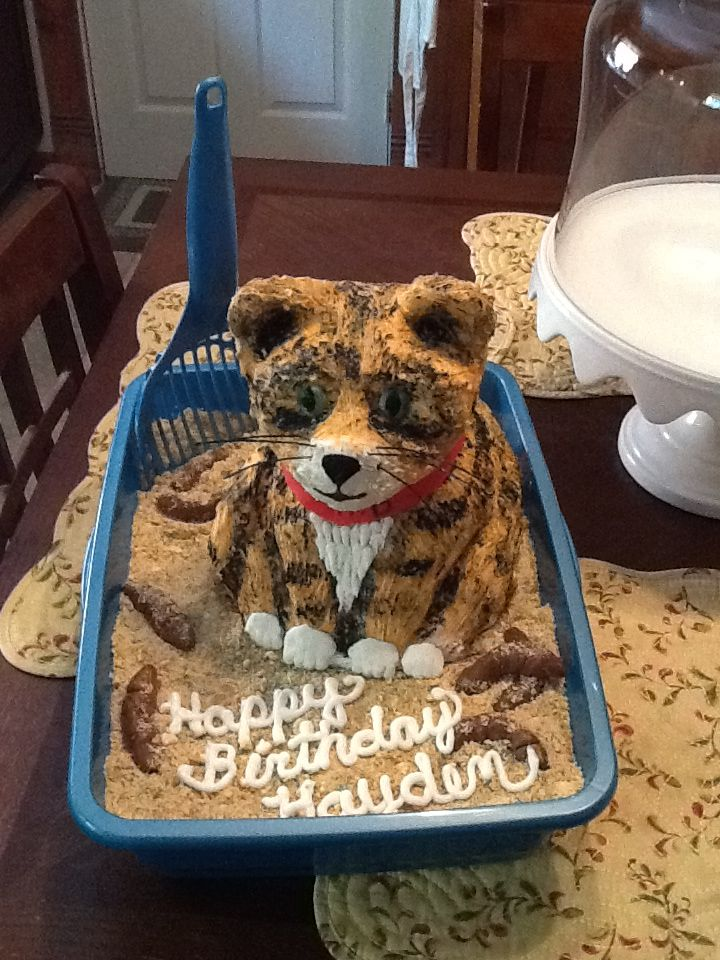 Cat litter box cake with tootsie rolls for the poop. Cat is made if ...
