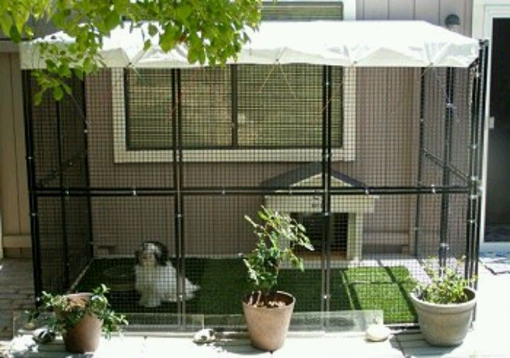 Dog Run With Doggy Door To House For The Home Pinterest
