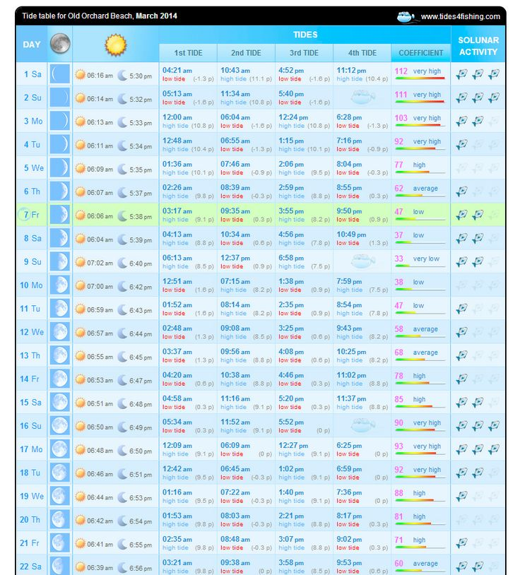 Pin by kelly berryman on learning things pinterest for Lunar fishing chart