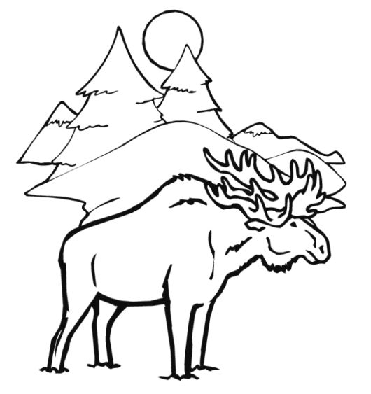 Moose Winter Animal Coloring Pages